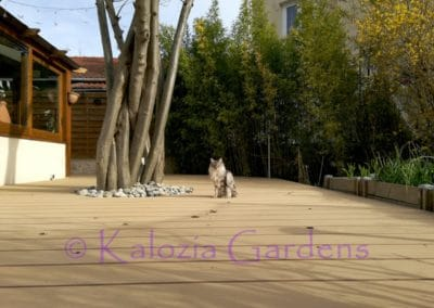 realisation-kalozia-03-04