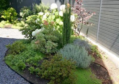 Vague de plantes Rueil